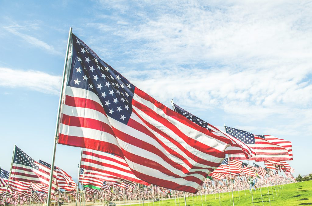 Many American Flags in a green field.