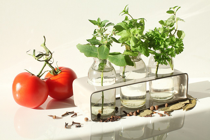 2 tomatoes with 3 different space in water jars.