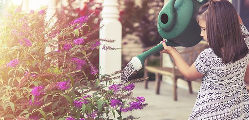 Young girl water plants with a green watering can.